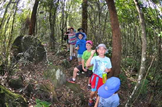 Mount Kiera walking trail